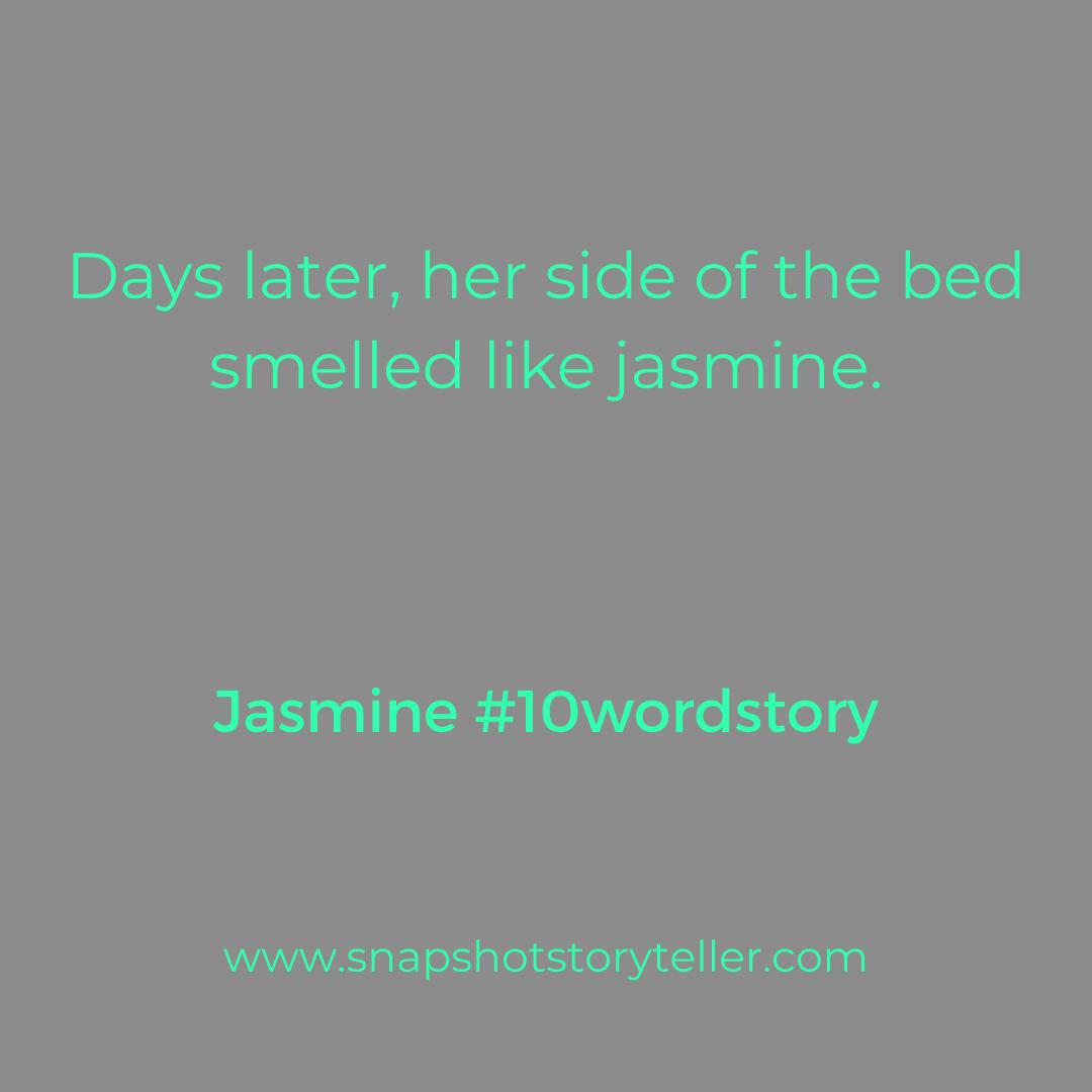 Snapshot Storyteller | Jasmine |www.snapshotstoryteller.com | www.snapshotstoryteller.com | #amwriting #SnapshotStoryteller #creativestoryteller #creative #storyteller #creativewriter #IWrite #WriteOn #writersofinstagram#10wordstory #10wordstories